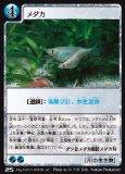 メダカ 【川の生き物】 J2-25 (地球環境カードゲーム マイアース シングルカード)